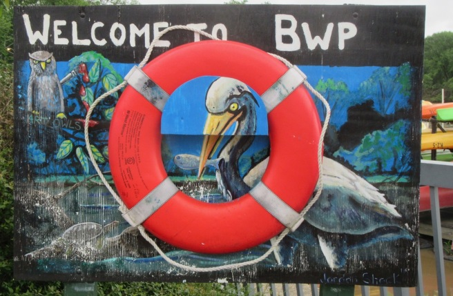 Welcome to BWP